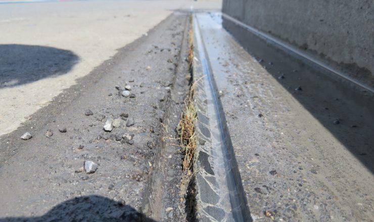 掘削完了/目地地下から成長している雑草