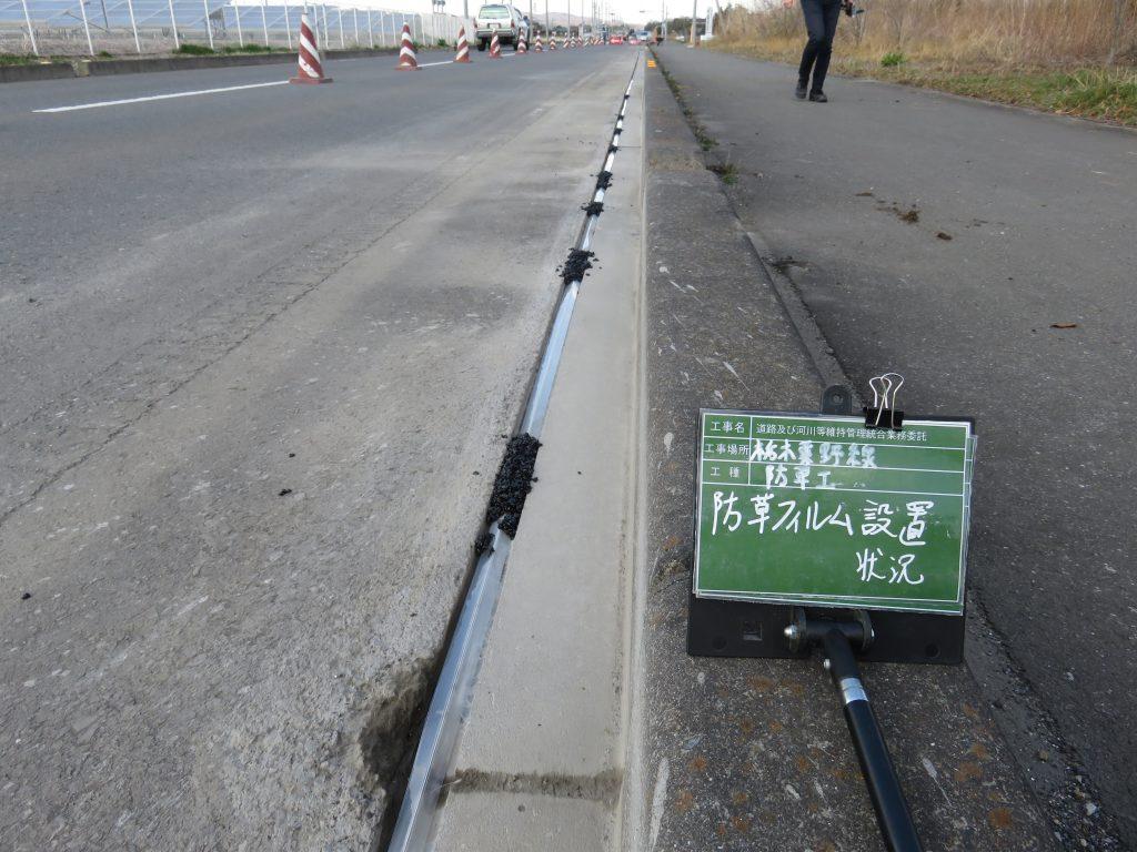 防草フィルム/設置中